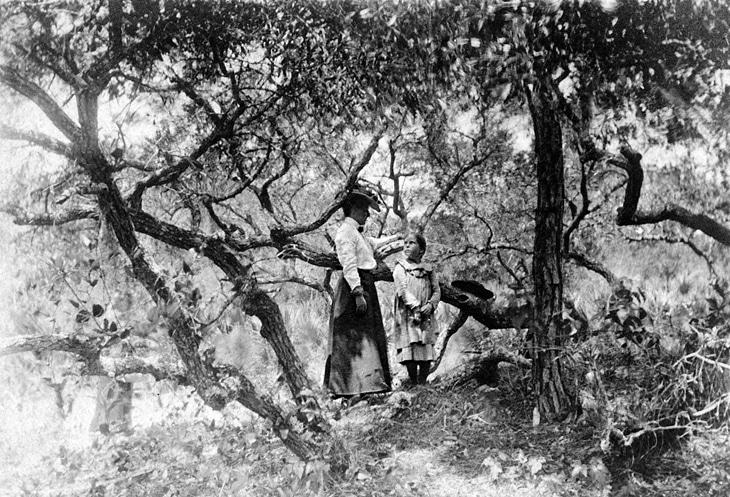 Myrtle & Clara Indian Mound 730