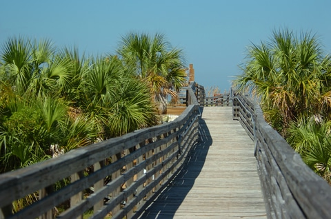 Caladesi Island boardwalk
